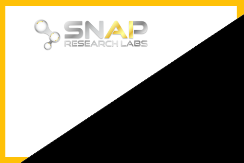 Snap Research Labs